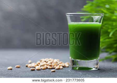 Morning Drink From Wheat Grass Juice. Healthy Superfood. Detox Concept.