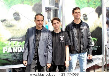 LOS ANGELES - FEB 17:  Maurice Benard, Guests at the World Premiere Of