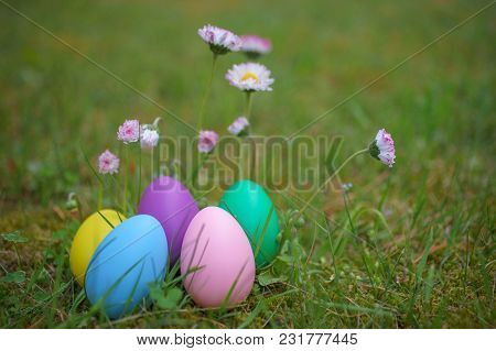 Colorful Eggs On Grass With Daisy Flowers. Happy Easter Background