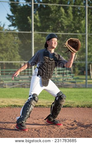 Youth Baseball Catcher Ready For The Ball.
