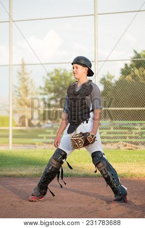 Young Catcher In Gear Poised To Catch The Baseball.