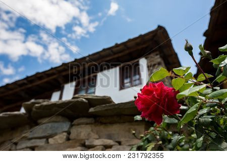 Red Rose Blossom With Blurred White Vintage Old Bulgarian House In The Background
