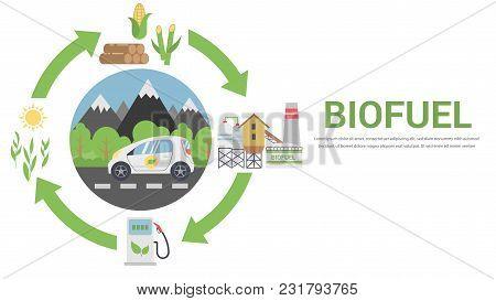 Biofuel Life Cycle, Biomass Ethanol From Corn, Sugarcane, Wood, Flat Design Vector Concept Illustrat