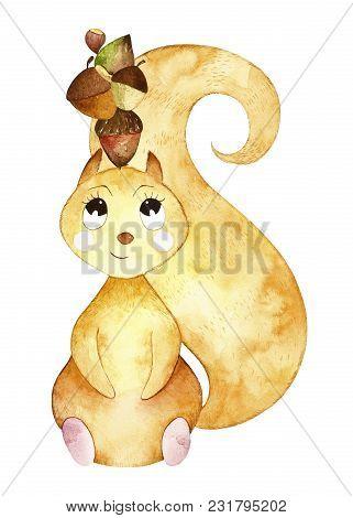 Watercolor Cute Squirrel. Squirrel Likes Nuts And Acorns.  Perfect For You Postcard Design, Invitati