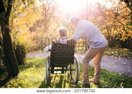 Senior Man And Elderly Woman In Wheelchair In Autumn Nature. Man With His Mother Or A Wife On A Walk