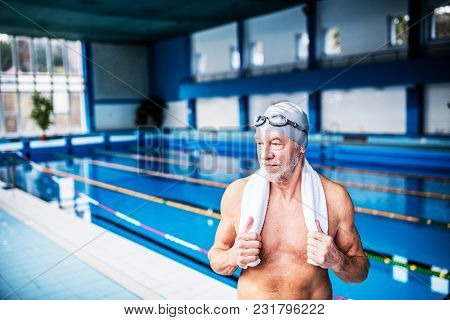 Senior Man Standing By The Indoor Swimming Pool, A Towel Around His Neck. Active Pensioner Enjoying