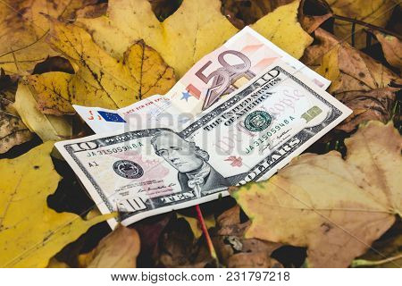 Dollars And Euros Lie On A Yellow Fallen Autumn Leaf, Concept Of Falling Price Of The Euro And The D