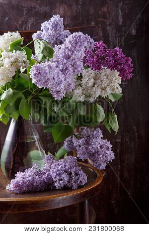 Bouquet Of Lilac Flowers On Old Vintage Chair.  Still Life On Dark Background.