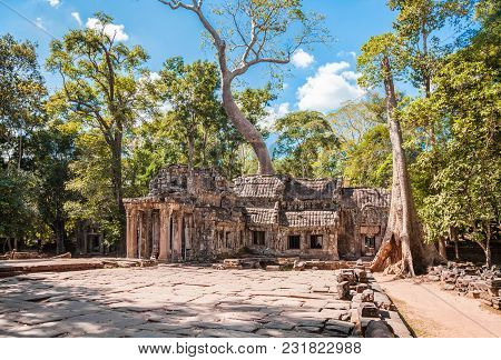 Ta Prohm Temple At Angkor Wat Complex In Siem Reap, Cambodia.