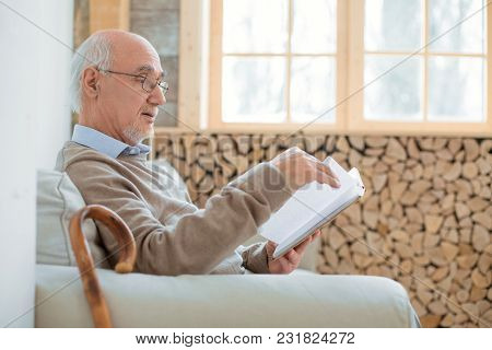 Interesting Book. Busy Charming Senior Man Sitting On Couch While Holding Book And Reading