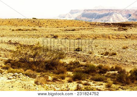 Rocky Hills Of The Negev Desert In Israel. Breathtaking Landscape Of The Desert Rock Formations In T