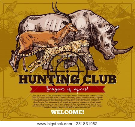 Hunter Club Or Hunting Open Season Sketch Poster Of Wild African Animals For Safari Hunt. Vector Des