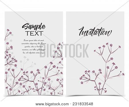 Vector Illustration Meadow Flowers. Floral Invitations. Set Of Greeting Cards
