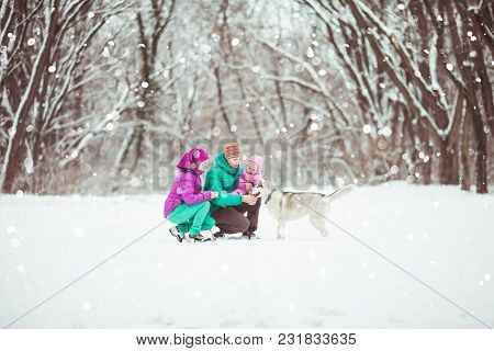 The Dad And Mom Are Walking With Their Daughter And Their Dog During Snowfall, Beautiful Cold Day