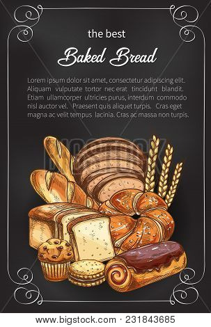 Bakery Shop Sketch Poster Of Baked Bread And Sweet Buns. Vector Design Template Of Baker Store Wheat