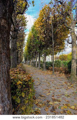 Paris, France - November 2017: Autumn In Paris. Garden At The Rodin Museum In Paris. France