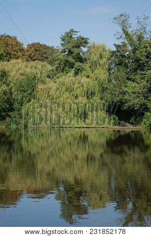 Landscape Photo Of A Quiet Village Pond With Reflections In The Water