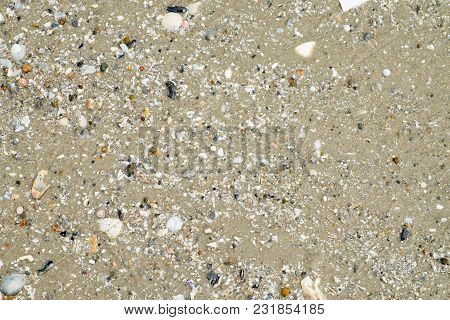 Wet Sand With Shell At Beach Coastline Texture Background.summer Concept