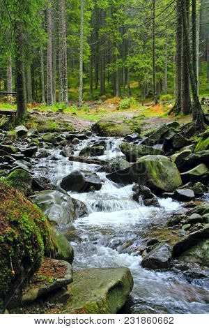 Huge Stones In Middle Of Fast Mountain River. Forest Stream Over Stones. Brook In Mountain Forest. W