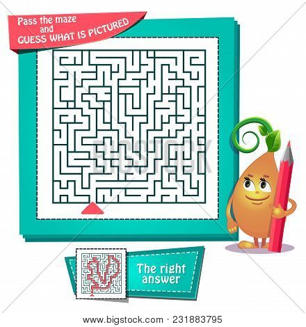 Maze  What Is Pictured