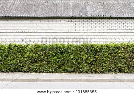 Green Arbour Hedge With White Brick Wall, Roof And Sidewalk Background