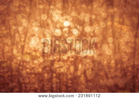 Golden Summer Nature Abstract Background Concept, Soft Focus, Bokeh, Warm Tones.