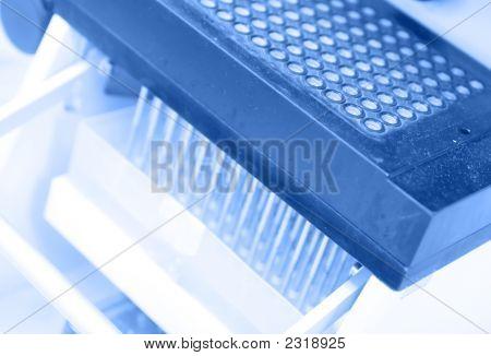 High Throughput Biology