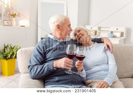 To Love. Pleasant Senior Couple Cuddling On The Couch And Making A Toast To Love, Clinking Their Gla