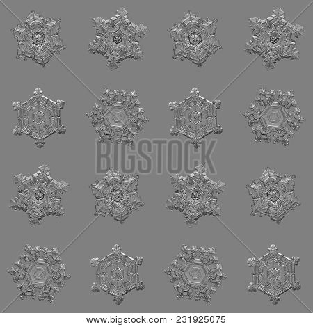 Several Snowflakes Isolated On Uniform Gray Background. Macro Photo Of Real Snow Crystals: Elegant S