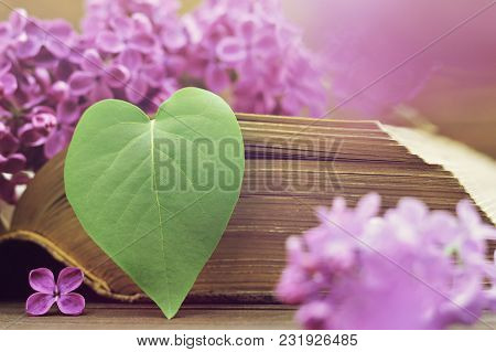 Anniversary Card With Heart Shaped Leaf And Lilac Flowers