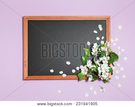 Spring Light Pink Background With White Blooming Apple Or Cherry Flowers, On The Black Chalkboard, H