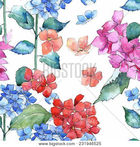 Wildflower  Hydrangea Flower Pattern In A Watercolor Style. Full Name Of The Plant:  Hydrangea. Aqua