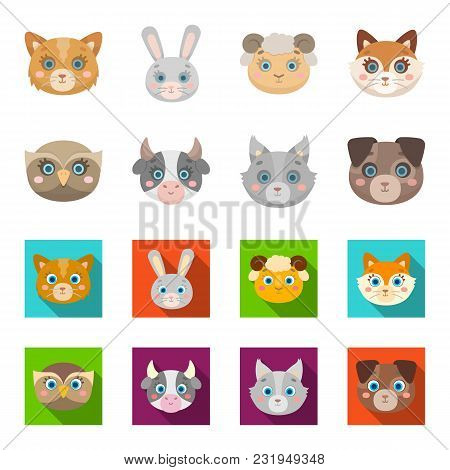 Owl, Cow, Wolf, Dog. Animal Muzzle Set Collection Icons In Cartoon, Flat Style Vector Symbol Stock I