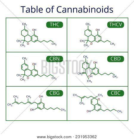 Cannabis Skeletal Cbd Formula. Marijuana Molecules Vector Set. Cannabis Formula Molecular, Chemistry