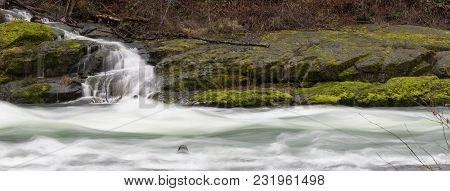 Whitewater Flows Fast Over And Past Rocks And Green Moss In The Umpqua River