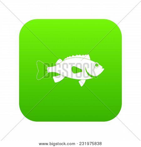 Sea Bass Fish Icon Digital Green For Any Design Isolated On White Vector Illustration