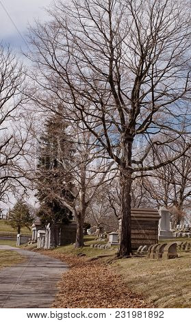 A Road Though A Cemetery With Bare Winter Trees And Bright Blue Skies And White Clouds. Mausoleums A