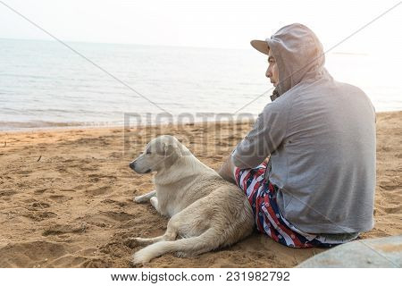 Man And Dog Sitting Together On Sand Beach Back View On Vacation Time. Rear View Of Hoodie Hipster M