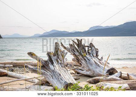 Pacific ocean coast in British Columbia, Canada. Wanderlust travel concept.