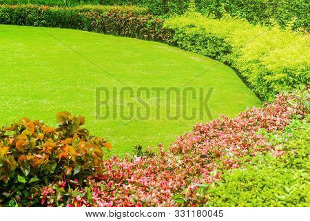 Green Lawns Surrounded By Shrubs, Beautifully Landscaped Gardens With Curves.