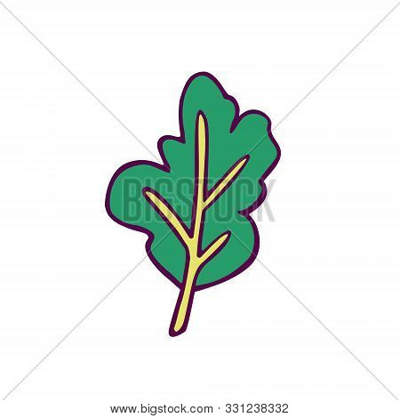 Salad Leaf (spinach Or Arugula)  Hand-drawn In Cartoon Style, Colored Artwork Isolated On White Back