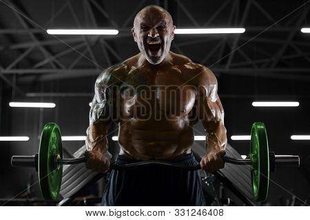 Handsome Strong Athletic Men Pumping Up Biceps Muscles Workout Fitness And Bodybuilding Concept Back