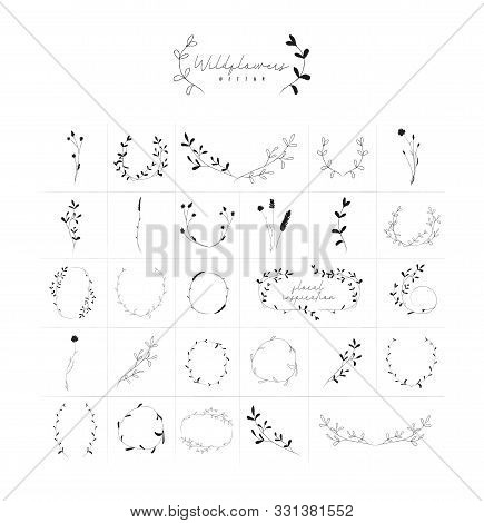 Vector Hand Drawn Doodle Floral Frames And Wreaths Collection, With Plants, Branches, Laurels, Flowe