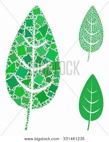 Flora Leaf Composition Of Irregular Parts In Various Sizes And Color Tints, Based On Flora Leaf Icon