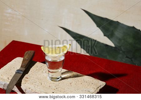 Mexcal Shot, And Agave Leaves. Mexican Flag Colors. Mezcal Is A Mexican Distilled Alcoholic Beverage