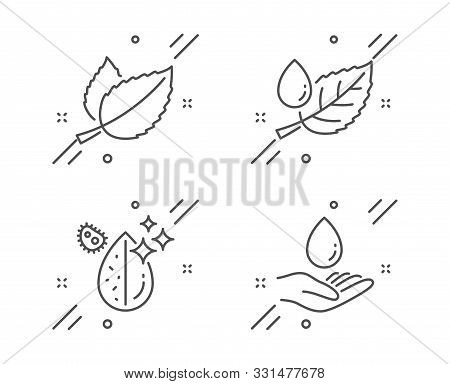 Leaf Dew, Dirty Water And Mint Leaves Line Icons Set. Water Care Sign. Aqua Drop, Mentha Herbal. Nat