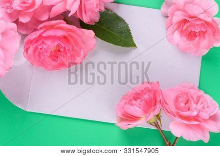 Flat View Of Envelope And Pink Rose On The Colour Background.
