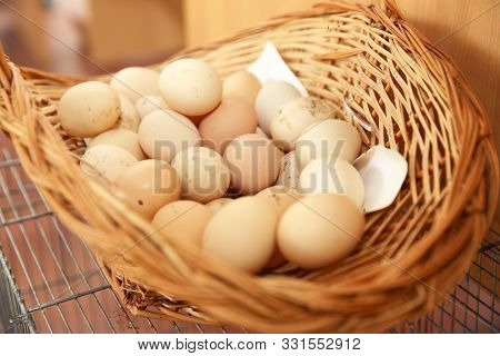 Eggs In A Wicker Basket . Easter Eggs.white Eggs In Basket.closed Up . Yellow And White Egg Yolk . B