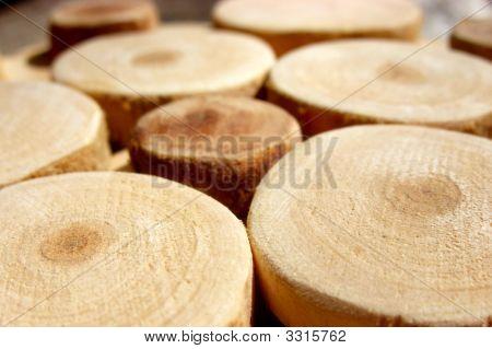 Sawn Wood Circles.