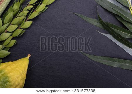 Set Of Four Species: Palm, Willow, Myrtle, Etrog. The Sukkot Festival. Lulav On Dark, Stony Backgrou